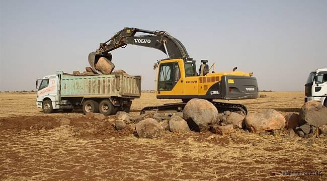 Kahramanmaraş'ta 10 843 Hektar Arazi Toplulaştırıldı