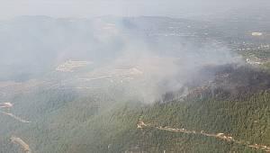 Orman Yangınında Yaklaşık İki Hektar Alan Yandı