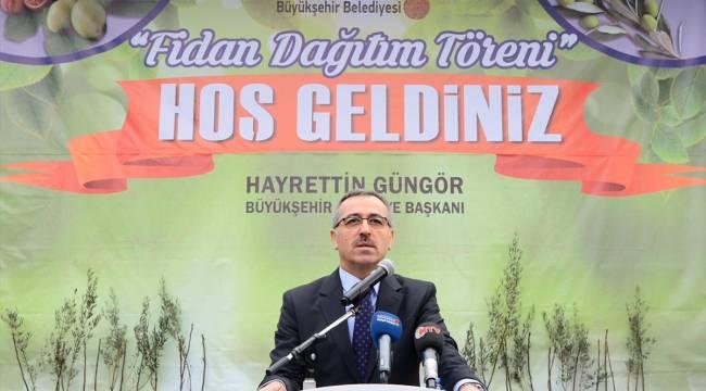 Büyükşehir Belediyesinden kırsal kalınmaya 97 bin fidan desteği