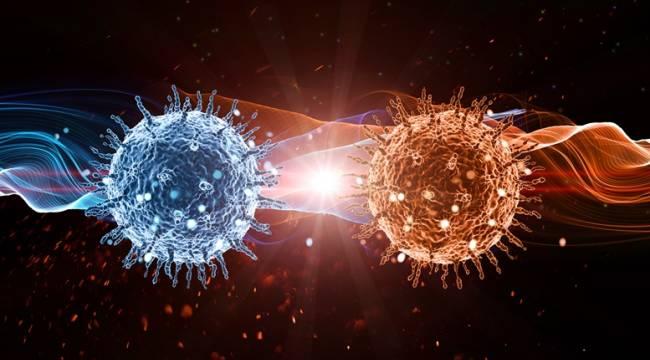 Coronavirüs internete sıçradı
