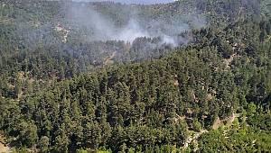 Andırın'da Orman Yandı
