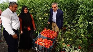 """""""Kahramanmaraş'ımız tarımın da başkentidir"""""""