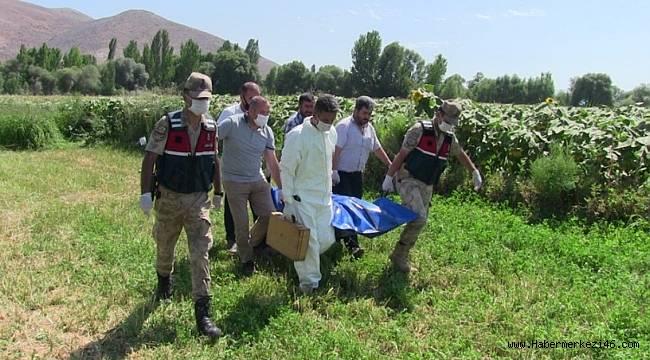 Kahramanmaraş'ta kaybolan engellinin cesedi ayçiçeği tarlasında bulundu