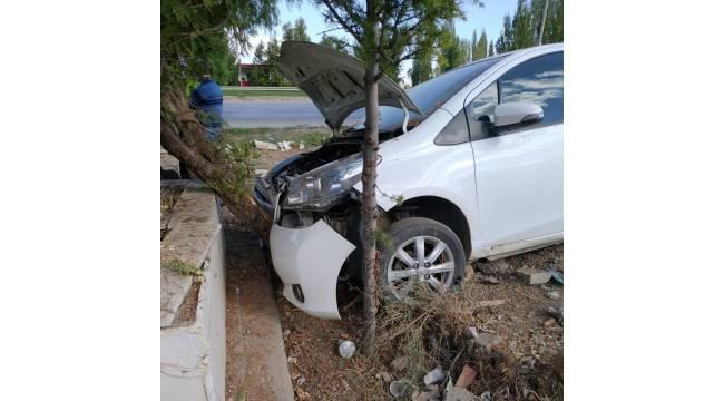 Kaz sürüsüne çarpmamak isterken ağaca çarptı