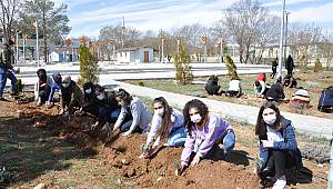 Afşin Belediye Başkanı Güven öğrencilerle lavanta dikti